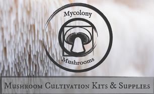 Mycolony Mushrooms
