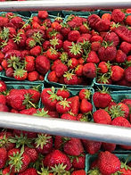Homegrown strawberries you-pick