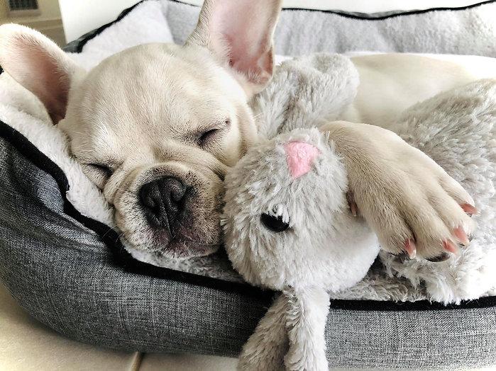 morning nap time_