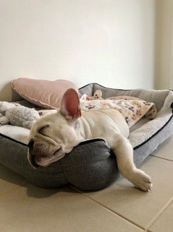 I just love my new bed.._