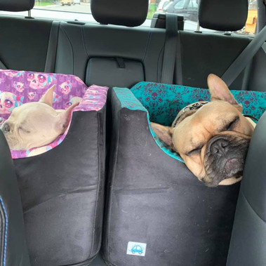 out for a drive with my big bro.