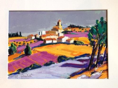Champs de lavande en Haute Provence