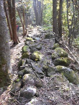 Trailwork3.JPG