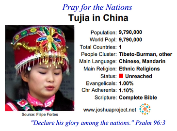 Tujia.PNG