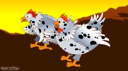 P-galinhas