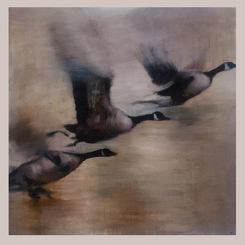 """""""Fly Far Far Away 1""""  Limited Edition Giclee Art Print"""