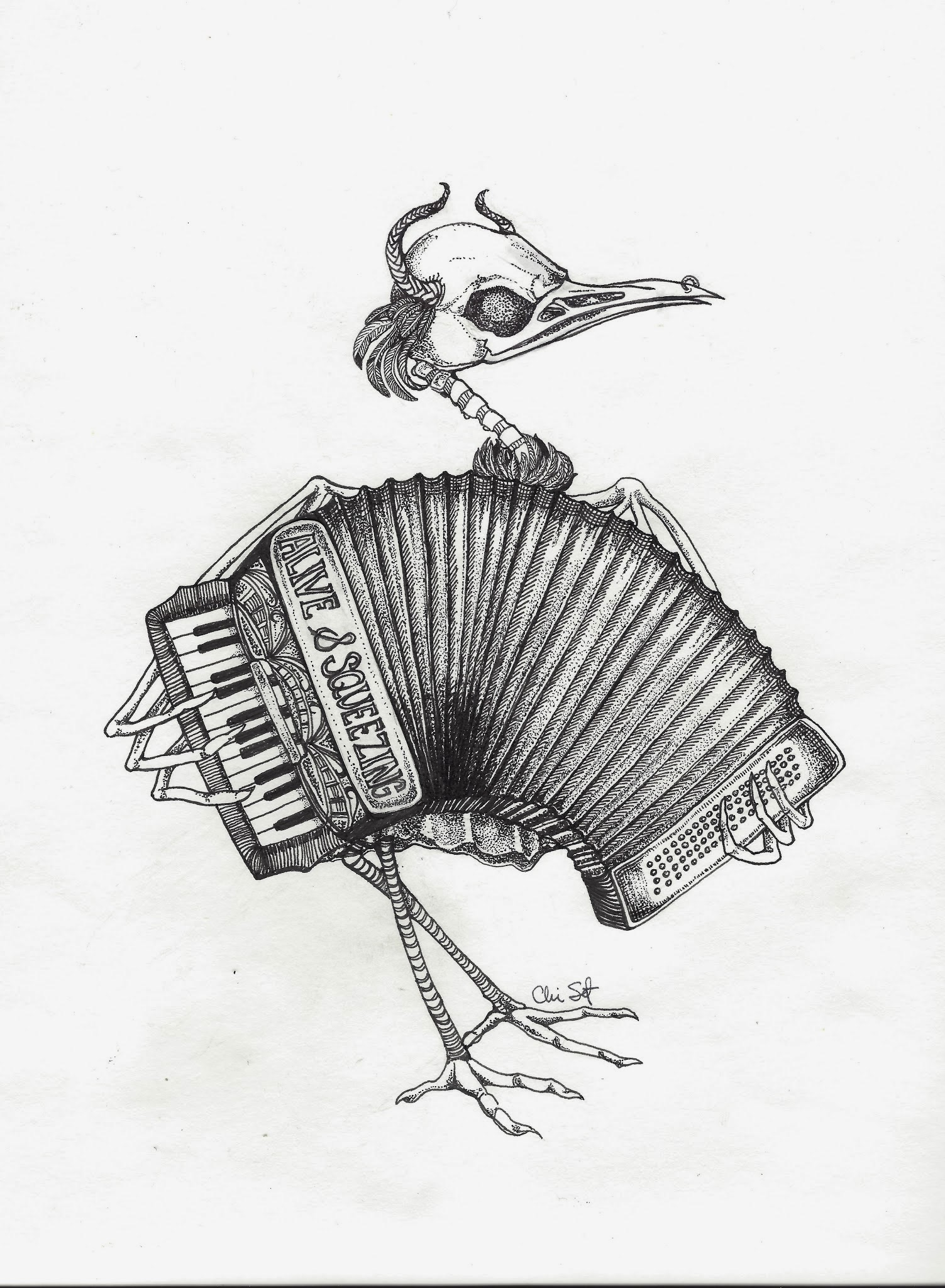 Skeletal Accordian
