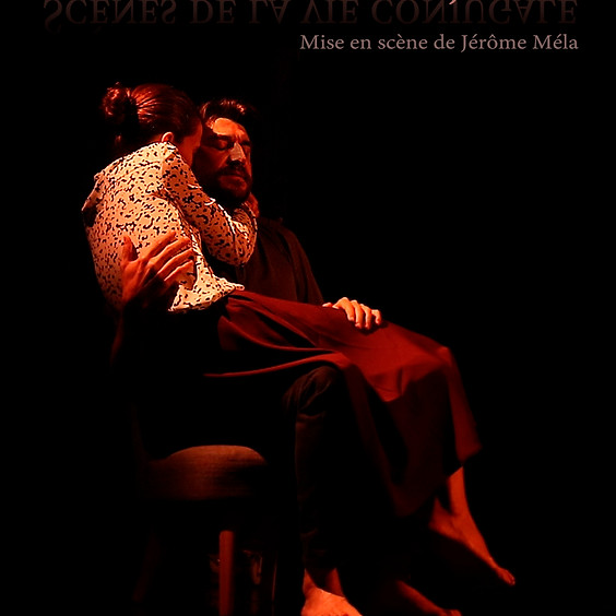 Scenes from married life - Based on the work of Ingmar Bergman