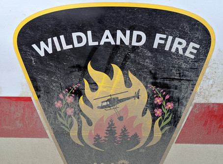 Wildfires in the Canadian Wilderness