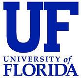 University-of-Florida-Top-20-Online-Mast