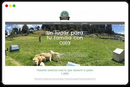 WEB PORTFOLIO-04.png
