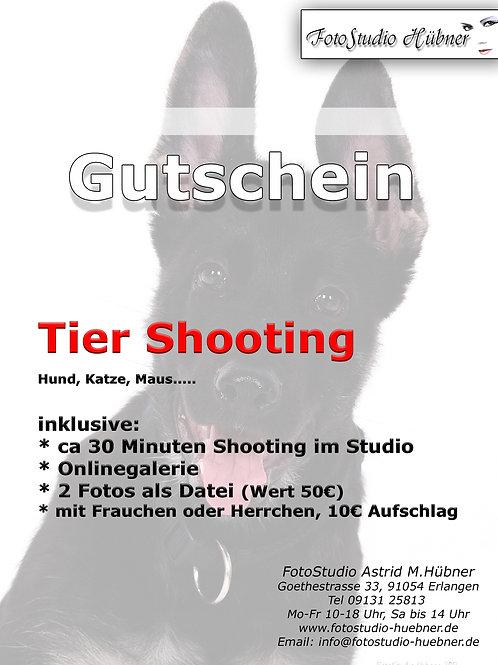 Tier FotoShooting