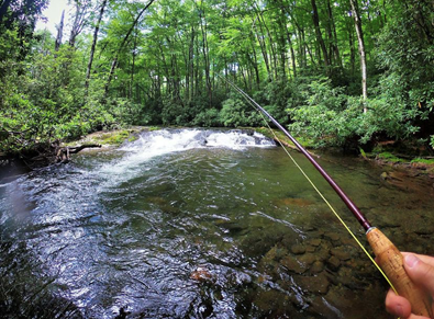 Get Your Reels Ready and Cast Your Line: A Bryson City Fly Fishing Guide