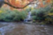 Tom Branch Falls, Deep Creek, Great Smoky Mountains National Park