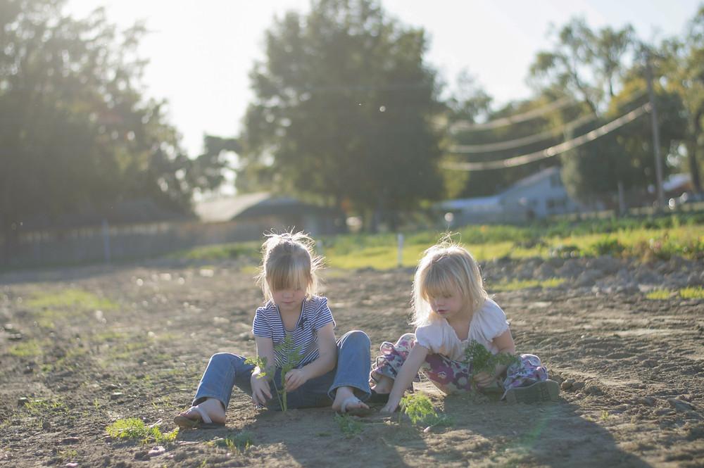 Crianças plantando ervas em uma horta