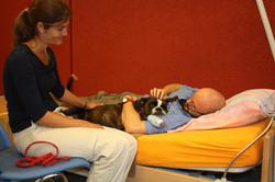 in der Ausbildung zum Sozialhund
