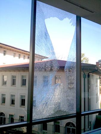 Alpha1_Window_Tint_Glass-Smash_Safety_se