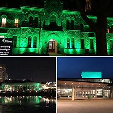 Green Shirt Day - Illumination.JPG