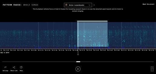 Pattern Radio.jpg