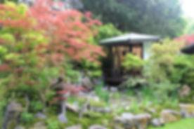 Ishihara_Kazuyuki_RHS_Chelsea_Flower_Sho