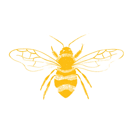 YELLOW-BEE-WEB_edited.png
