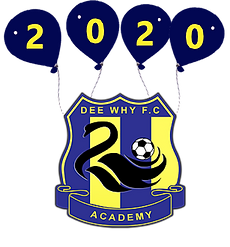 Badge and balloons.png