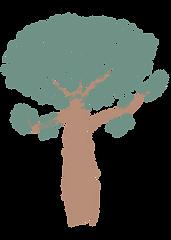 Baobá.png