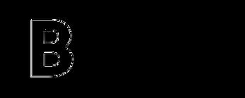 logo-bt-invert.png