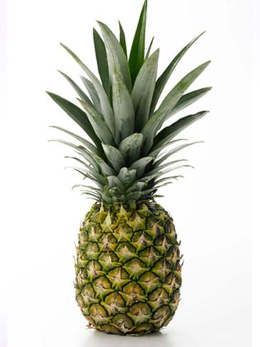 パイナップルの種類