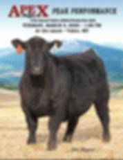2020 Catalog cover.JPG