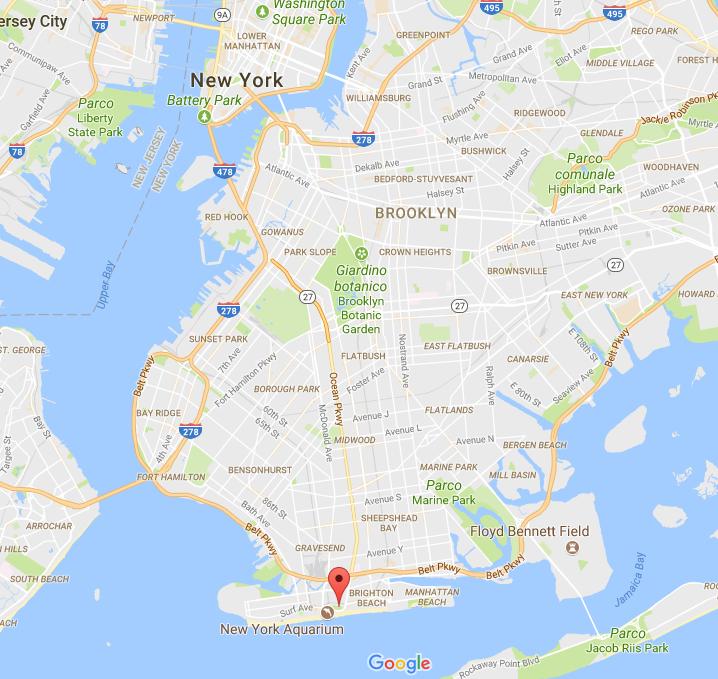 Coney Island dove si trova mappa