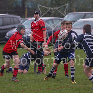Staines rugby club Minis festival