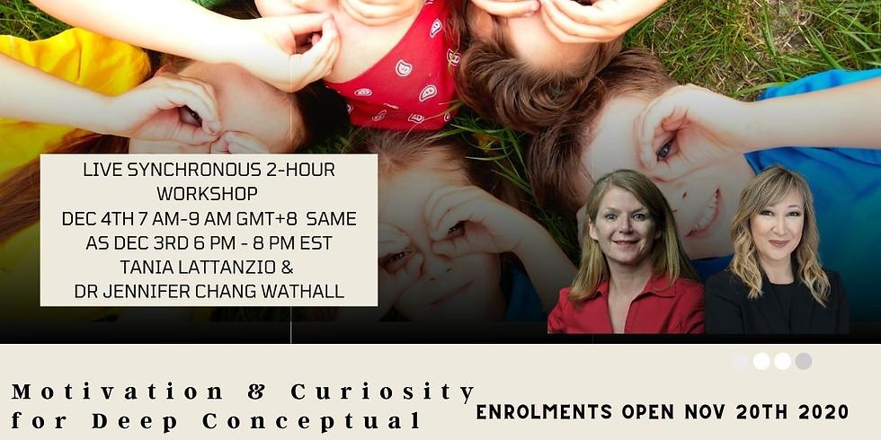 Motivation and Curiosity for Deep Conceptual Understanding