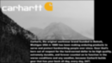 CARHARTT PROJECT PNGs-02.png
