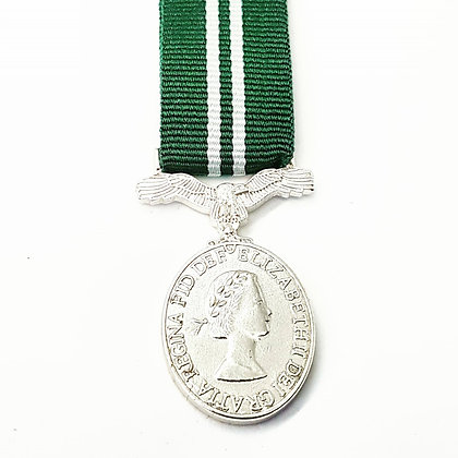 Air Effiency Medal.