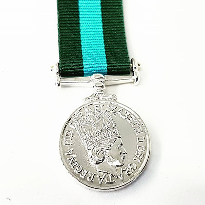 Home Service medal (NI)