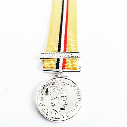 Iraq Optelic medal and clasp