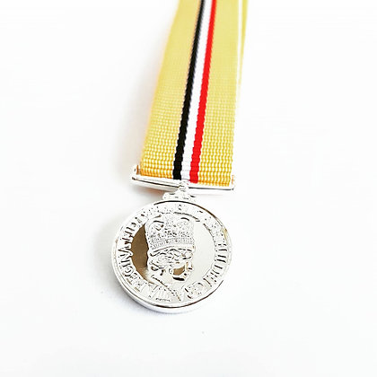 The Iraq Medal ( Without clasp )