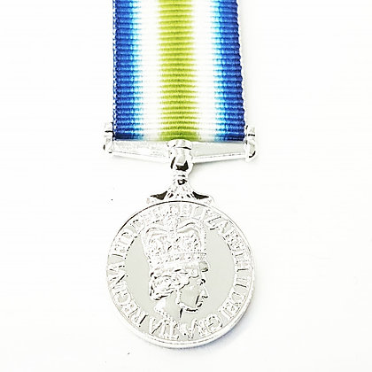 The South Atlantic medal and rosette.