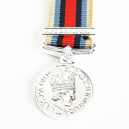 The Afghanistan Medal (Deluxe)