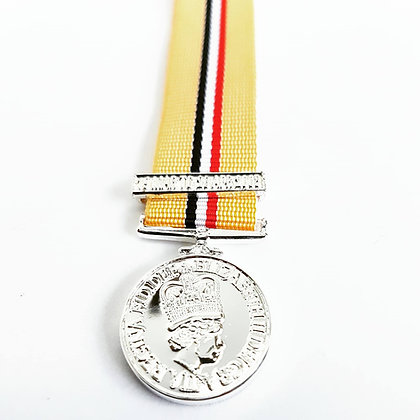The Iraq medal with clasp.
