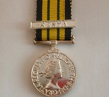 The Miniature Africa General Service medal