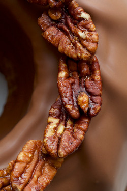 CAKES_MICHALAK_FRUITS_CHOCOLAT_PECAN
