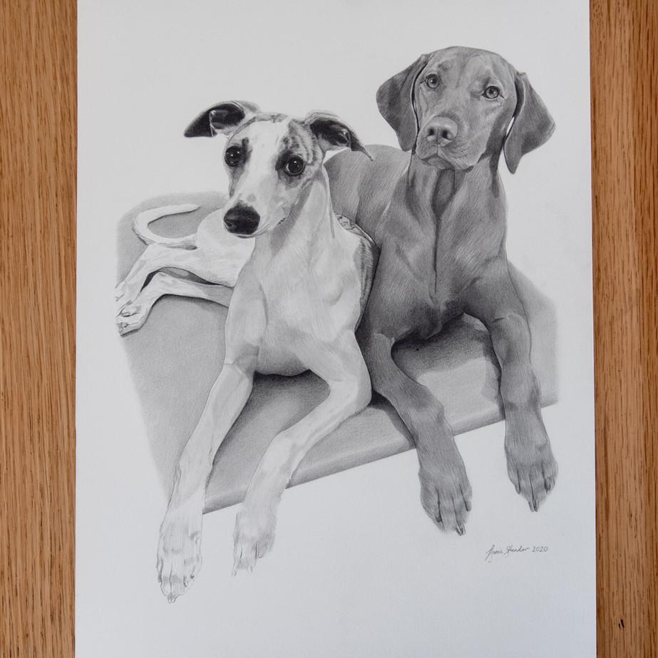 Ruby & Piper