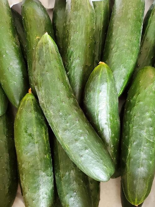 Cucumber, 1 dozen