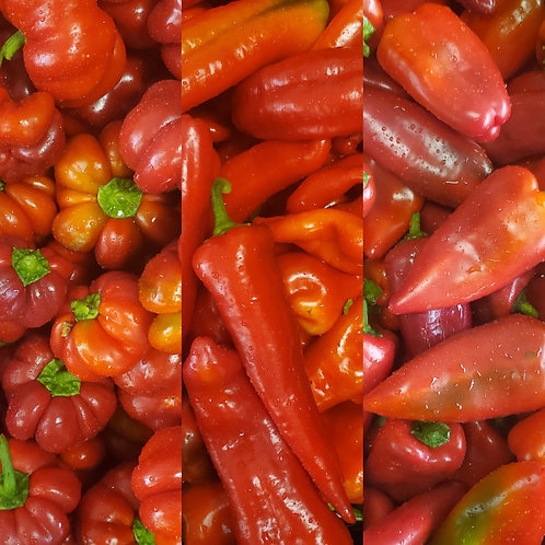 Sweet Peppers, 1 lb