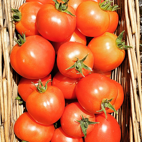 Early Girl Tomatoes, 1 pound