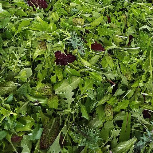 Mesclun Salad Mix, 3lbs