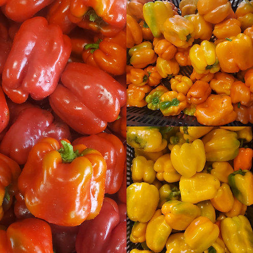 Sweet Bell Peppers, 1 lb