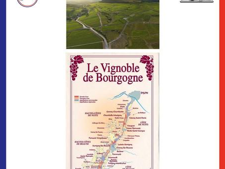 Degustazione Borgogna: Vini e formaggi